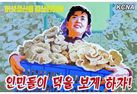 Introduccion Memorias Kim Il Sung + Posters de la Republica Popular Democratica de Corea Kcna03022015-06